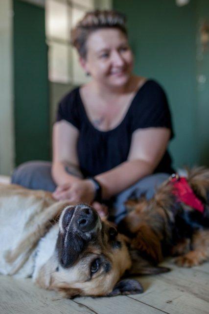 adopcja-psy-dom-rodzina-pismo-zdjecie