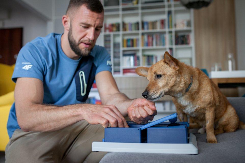 pies-adopcja-rodzina-dom-karmienie-jedzenie-pismo