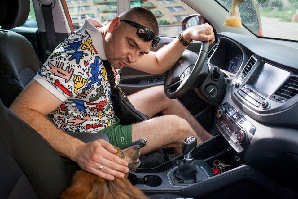 pismo-samochod-pies-keith-harring-honda-jazda